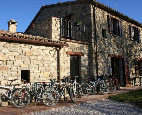 Tour bici riccione eno gastronomico MTB elettrica ale bike